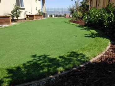 Artificial Grass Photos: Outdoor Carpet Wilmington, Ohio Landscaping Business, Backyard Garden Ideas