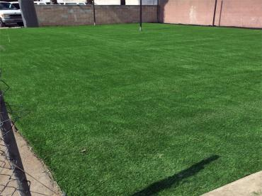 Artificial Grass Photos: Plastic Grass Edgewood, Ohio Sports Athority