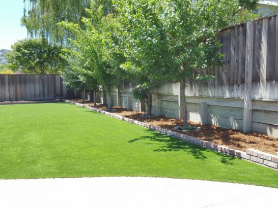 Synthetic Grass Alexandria, Ohio Home And Garden, Backyard Design artificial grass