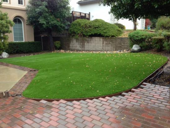 Artificial Grass Photos: Synthetic Grass Boston Heights, Ohio Landscape Ideas, Front Yard Design