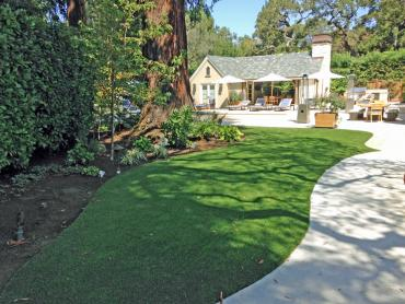 Synthetic Grass Dent, Ohio Home And Garden, Commercial Landscape artificial grass