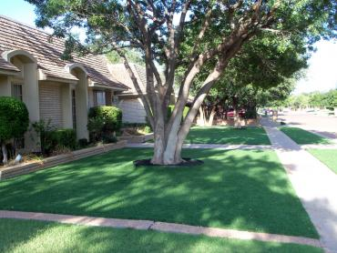 Artificial Grass Photos: Synthetic Grass Northridge, Ohio Landscaping, Front Yard Landscape Ideas