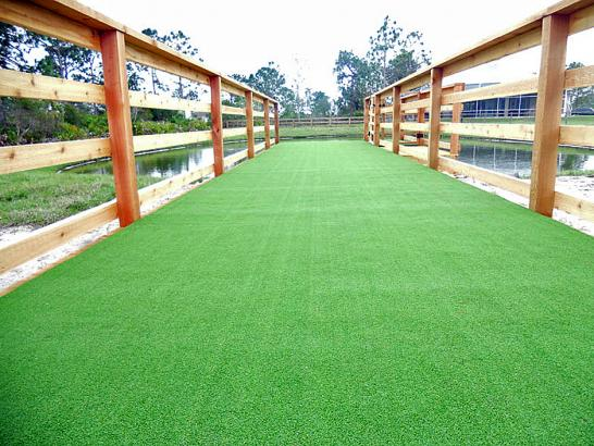 Artificial Grass Photos: Synthetic Grass Woodville, Ohio Dog Pound, Commercial Landscape