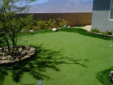 Artificial Grass Photos: Synthetic Lawn Obetz, Ohio Landscape Design, Backyards