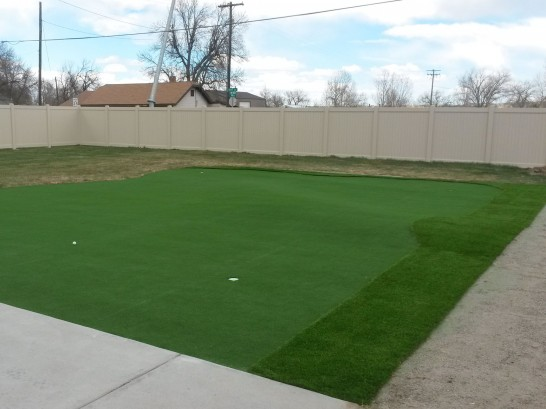 Artificial Grass Photos: Synthetic Lawn Pleasant Hills, Ohio Home Putting Green, Backyard