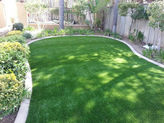 Artificial Grass Photos: Synthetic Lawn Thurston, Ohio Landscaping Business