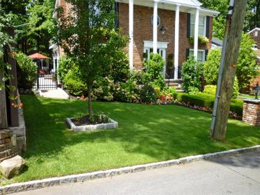 Artificial Grass Photos: Synthetic Turf Jackson, Ohio Landscape Photos, Front Yard Design