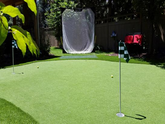 Artificial Grass Photos: Synthetic Turf Jamestown, Ohio Backyard Playground, Backyard Garden Ideas