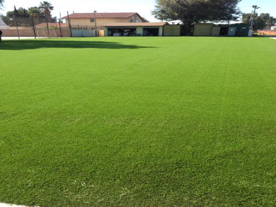 Artificial Grass Photos: Synthetic Turf Supplier Granville South, Ohio Backyard Sports, Parks