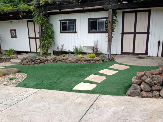 Artificial Grass Photos: Synthetic Turf Supplier Windham, Ohio Gardeners, Front Yard Ideas