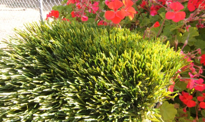 Double S-72 syntheticgrass Artificial Grass