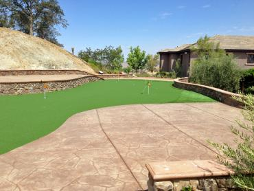 Artificial Grass Photos: Turf Grass Walton Hills, Ohio Putting Green Flags, Backyard Landscaping Ideas